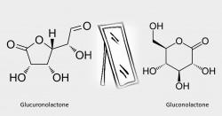 Ne confondons pas glucuronolactone et gluconolactone !