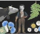 Des odeurs sui generis bovines