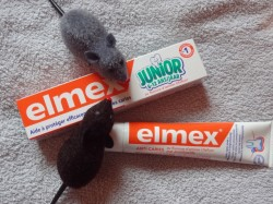 A chacun son dentifrice Elmex