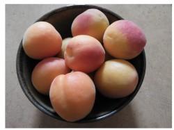 L'acide salicylique, l'ingrédient cosmétique qui ne compte pas pour des prunes !