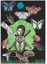 Cosmétiques, passez votre chemin, semble nous dire Kafka !