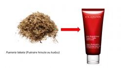 La racine de Kudzu, un exemple végétal à effet oestrogénique reconnu