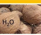 L'eau de coco : fontaine de jouvence ou excipient très aqueux ?
