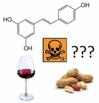 Resvératrol, vous reprendrez bien un peu de phyto-oestrogène ?