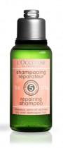 Un shampooing réparateur qu'il vaut mieux oublier