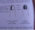 Histoire véridique de la french manucure, une technique bien française !